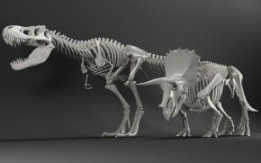 现代恐龙骨架组合3D模型【ID:527796392】
