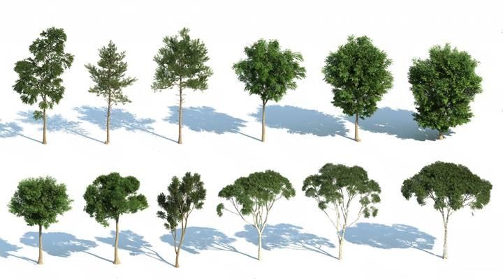 树3D模型【ID:320026694】