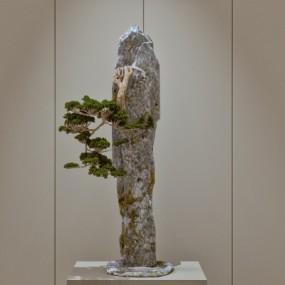 新中式石头松树摆件3D模型【ID:928563182】
