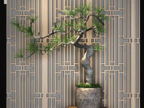 新中式植物羅漢松盆栽3D模型【ID:327783874】