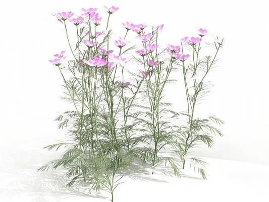 现代花3D模型【ID:220616891】