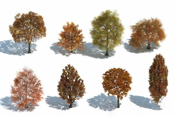现代树3D模型【ID:320619682】