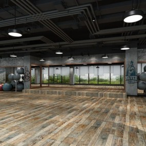 工业风健身房3D模型【ID:927969632】