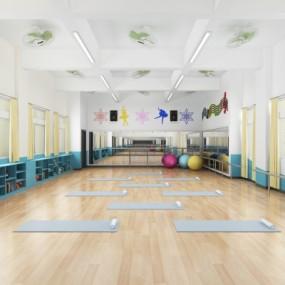 现代瑜伽室舞蹈室3D模型【ID:528453832】