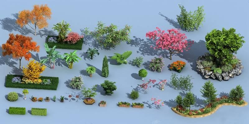 灌木3D模型【ID:320008568】