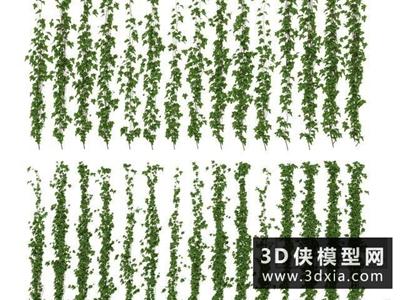 爬山虎國外3D模型【ID:229479639】