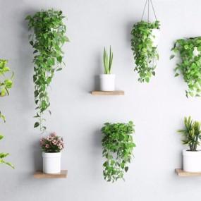 植物墙饰3D模型【ID:327927816】