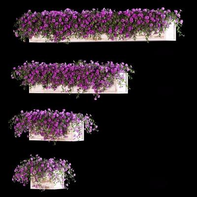 现代绿植吊篮3D模型【ID:328440890】