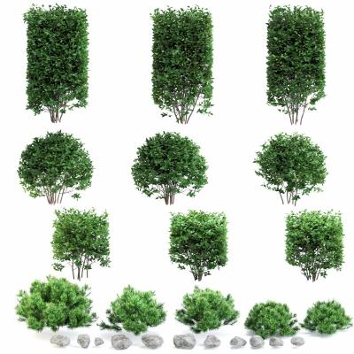現代灌木綠籬3D模型【ID:528454454】