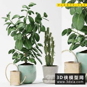 室內植物組合國外3D模型【ID:229323765】