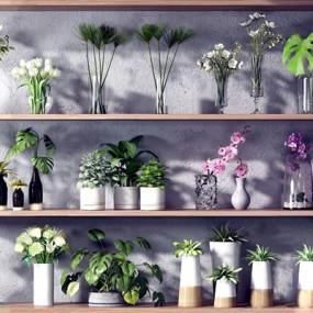 现代绿植花卉花瓶组合3D模型【ID:327935803】