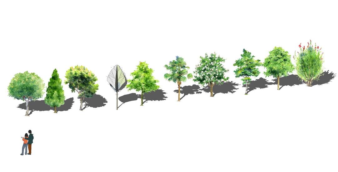2D水彩树组合SU模型【ID:137081657】