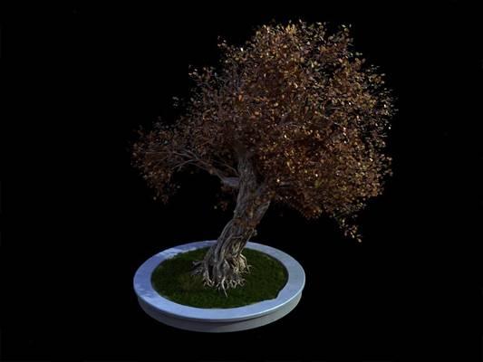 现代树3D模型【ID:320615693】