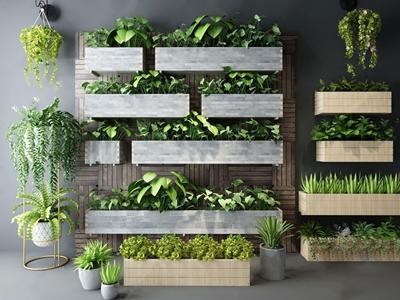 现代户外植物花园花草绿植组合3D模型【ID:220821070】