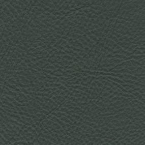 皮革-常用皮革 169【ID:737065152】