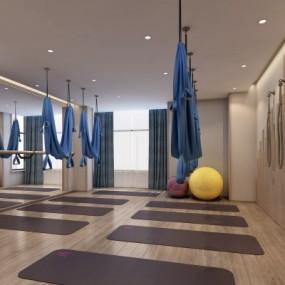 新中式瑜伽室3D模型【ID:528452067】