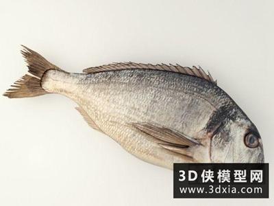 咸魚國外3D模型【ID:929573575】