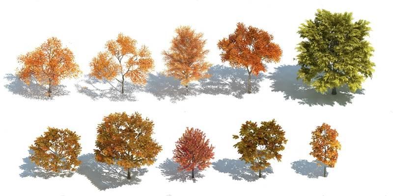 树3D模型【ID:320020654】