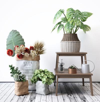 北欧植物3D模型【ID:245189847】