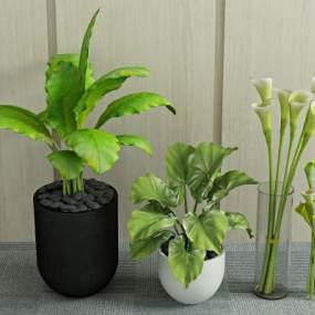 现代植物盆栽3D模型【ID:233208840】
