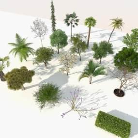 現代樹木組合3D模型【ID:246757879】