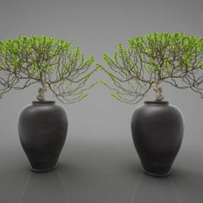 現代風格植物3D模型【ID:246971829】