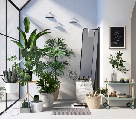 北欧绿植盆栽植物组合3D模型【ID:245484834】