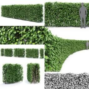 現代灌木綠籬3D模型【ID:150113473】