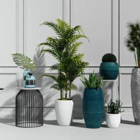 现代绿植盆栽模型组合3D模型【ID:231975820】