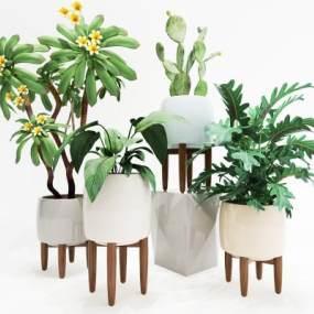 植物组合3D模型【ID:233509842】