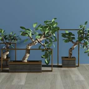 现代植物盆栽3D模型【ID:231797873】