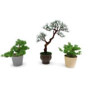 现代盆栽绿植组合3D模型【ID:235965811】