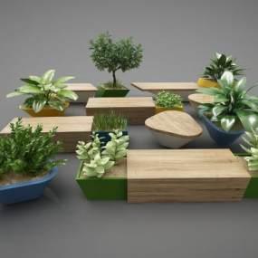 现代风格植物3D模型【ID:248854599】