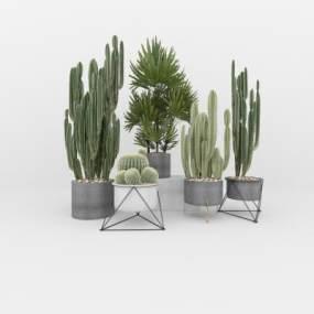 北欧绿植盆栽组合3D模型【ID:248881863】