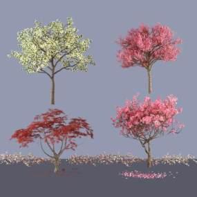 新中式白兰花树红枫树樱花树3D模型【ID:230496804】