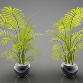 現代風格植物3D模型【ID:247386839】