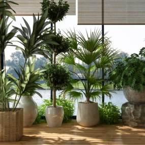 现代绿植盆景3D模型【ID:236275869】