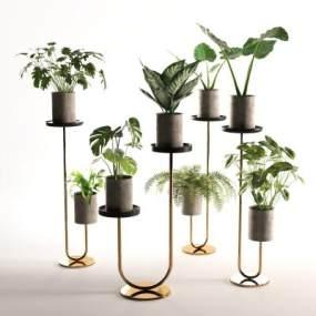 現代綠植盆栽3D模型【ID:242537803】