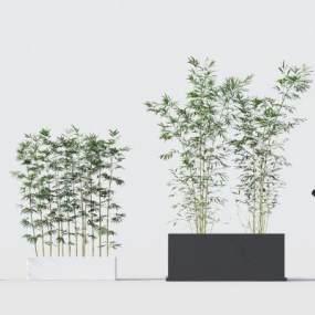 现代绿植竹子3D模型【ID:242493888】