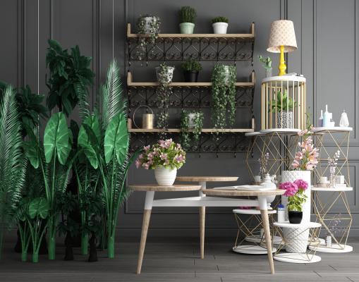 绿植盆景吊兰墙饰摆件桌子组合3D模型【ID:240012879】