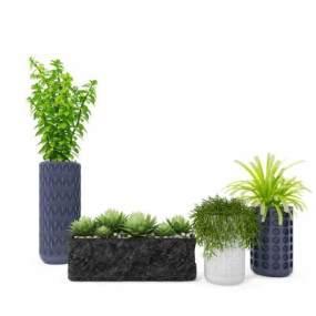 现代盆栽绿植组合3D模型【ID:235964888】