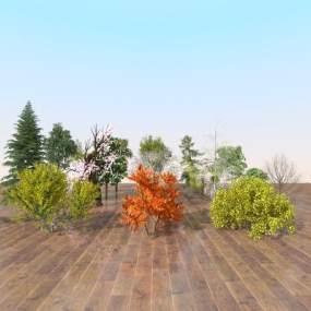 现代室外植物3D模型【ID:244672843】