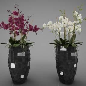 现代风格植物3D模型【ID:248862845】