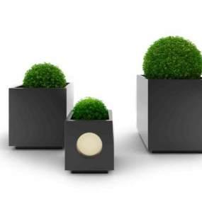现代盆栽绿植组合3D模型【ID:235965803】