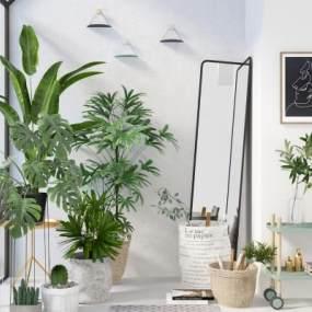 北欧植物盆景3D模型【ID:242926871】