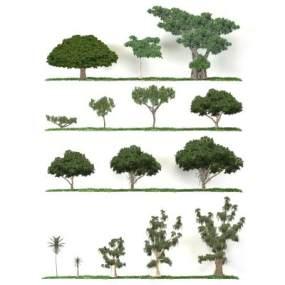 现代省面植物树简模3D模型【ID:233108886】