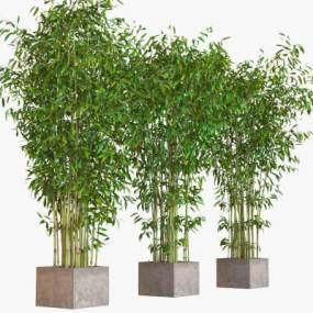 新中式竹子盆栽3D模型【ID:236269885】