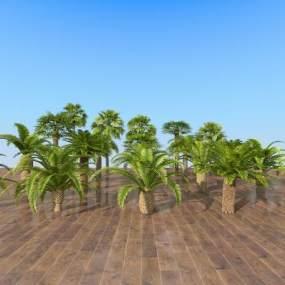 现代室外热带树木组合3D模型【ID:244346814】