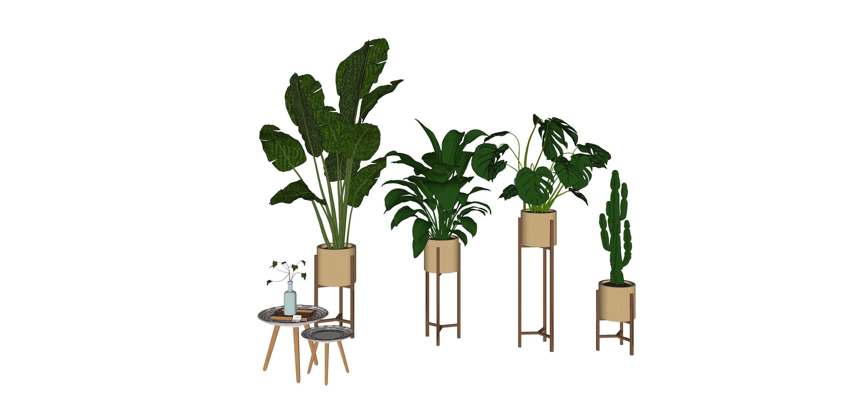 现代绿植盆栽SU模型【ID:153804850】