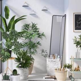 现代植物3D模型【ID:244333869】